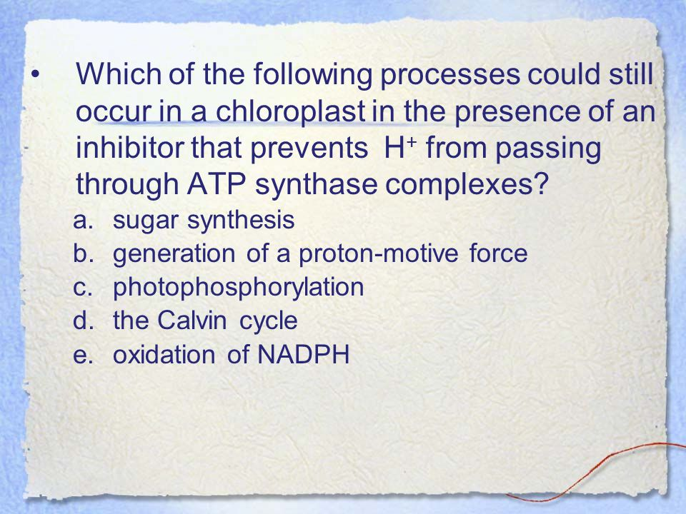 Which of the following processes could still occur in a chloroplast in the presence of an inhibitor that prevents H+ from passing through ATP synthase complexes