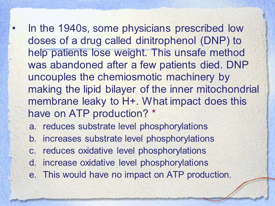 In the 1940s, some physicians prescribed low doses of a drug called dinitrophenol (DNP) to help patients lose weight. This unsafe method was abandoned after a few patients died. DNP uncouples the chemiosmotic machinery by making the lipid bilayer of the inner mitochondrial membrane leaky to H+. What impact does this have on ATP production *