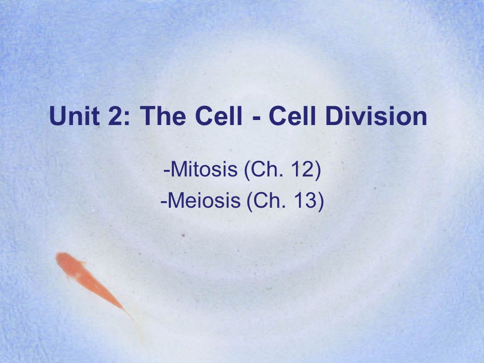 Unit 2: The Cell - Cell Division