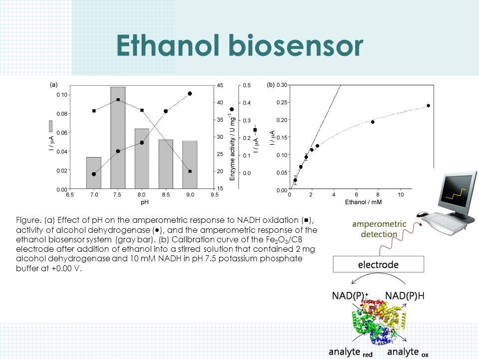 Ethanol biosensor