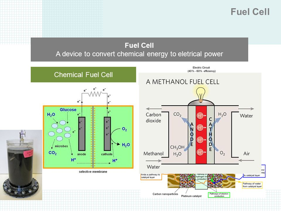 Fuel Cell Fuel Cell. A device to convert chemical energy to eletrical power. Chemical Fuel Cell. BioFuel Cell.