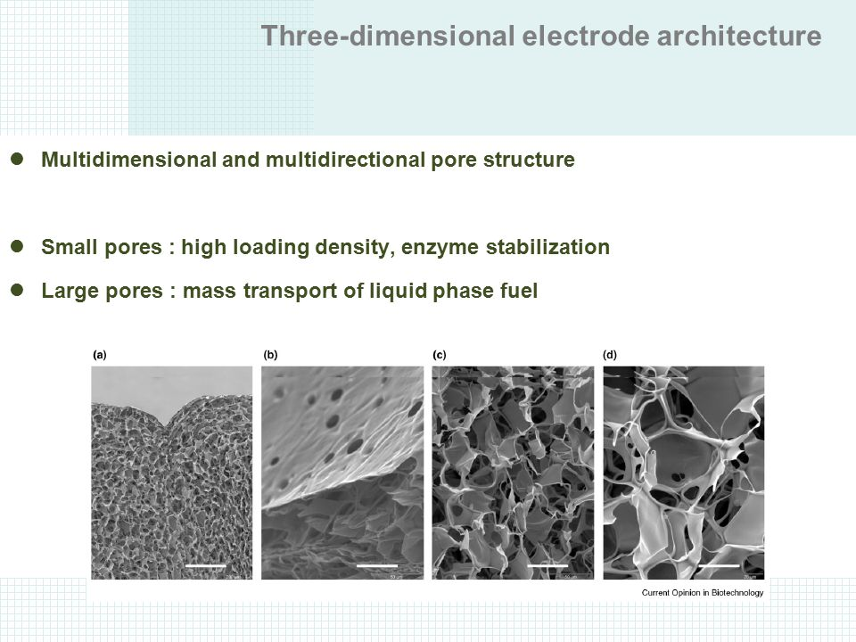 Three-dimensional electrode architecture