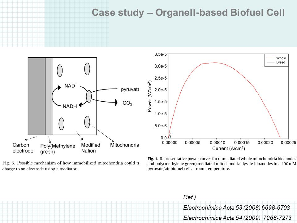 Case study – Organell-based Biofuel Cell