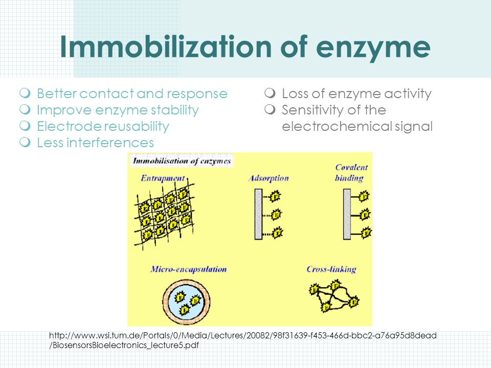 Immobilization of enzyme
