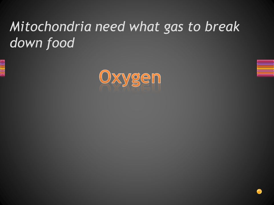 Mitochondria need what gas to break down food