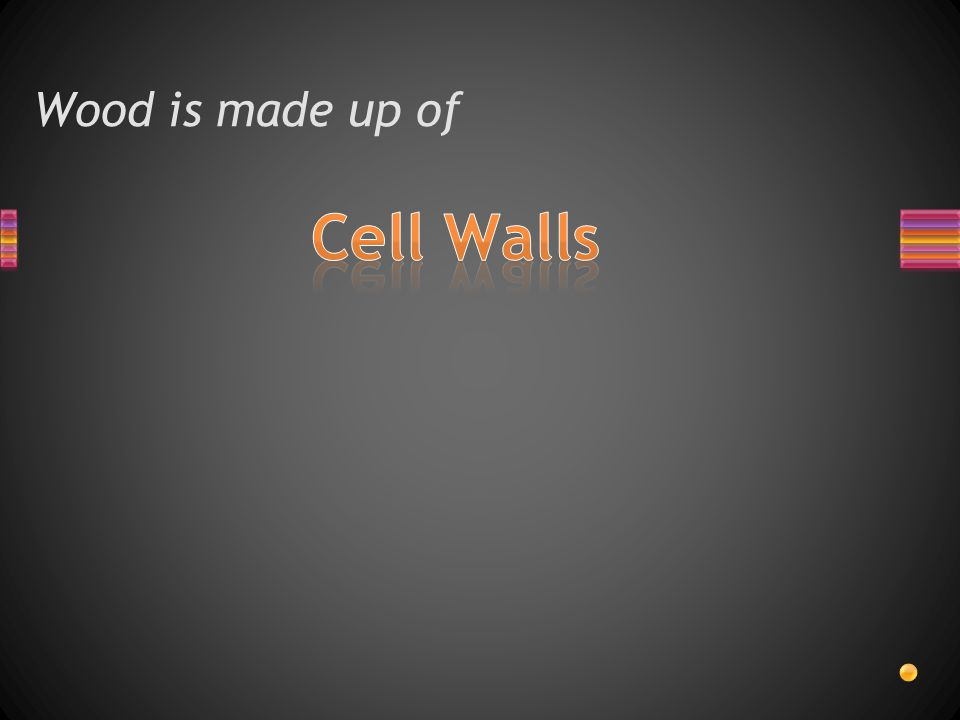Wood is made up of Cell Walls