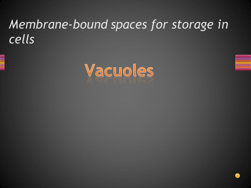 Membrane-bound spaces for storage in cells