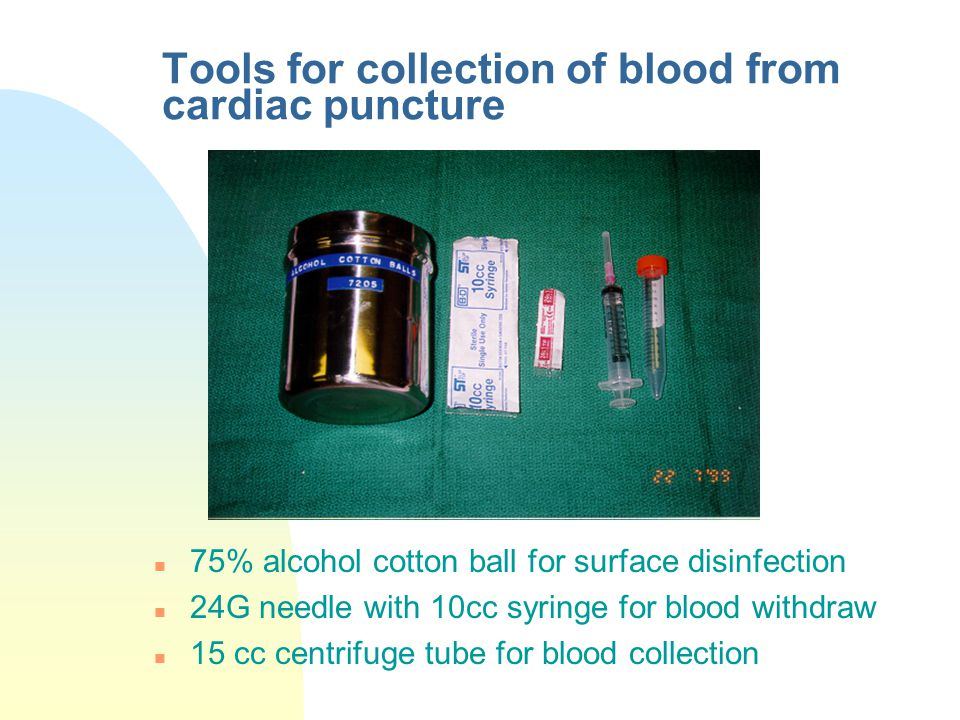 Tools for collection of blood from cardiac puncture