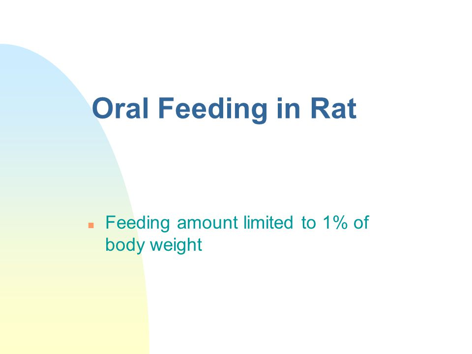 Oral Feeding in Rat Feeding amount limited to 1% of body weight