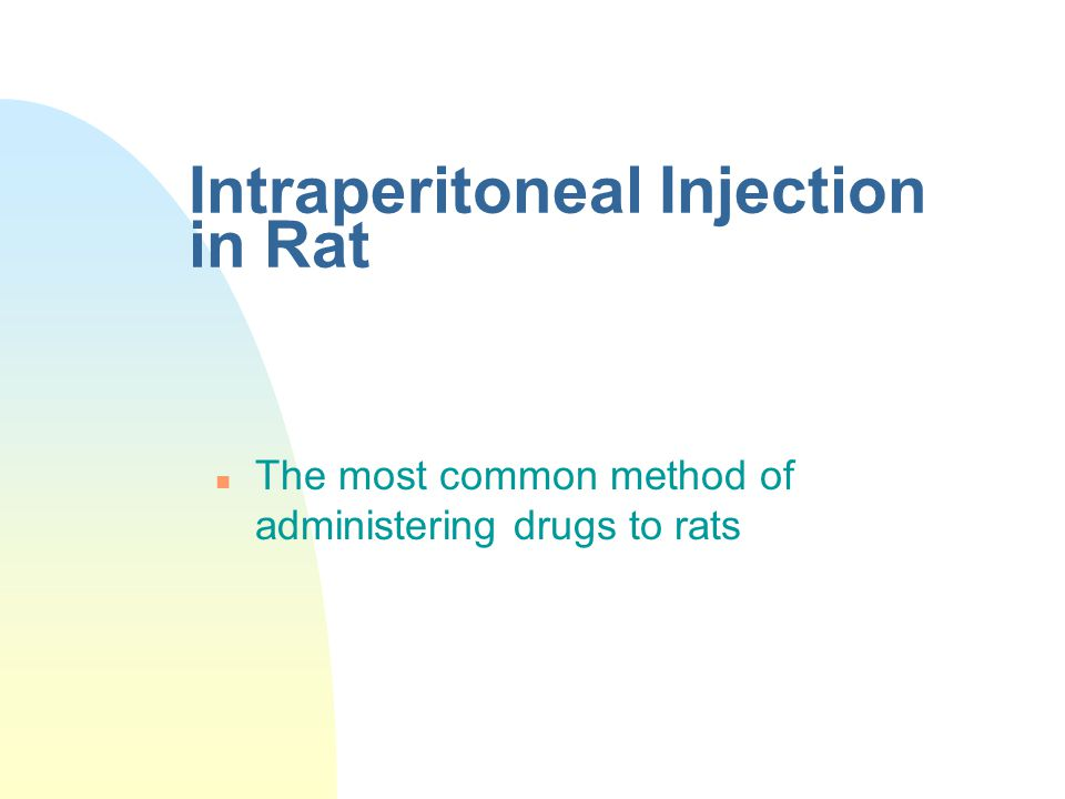 Intraperitoneal Injection in Rat