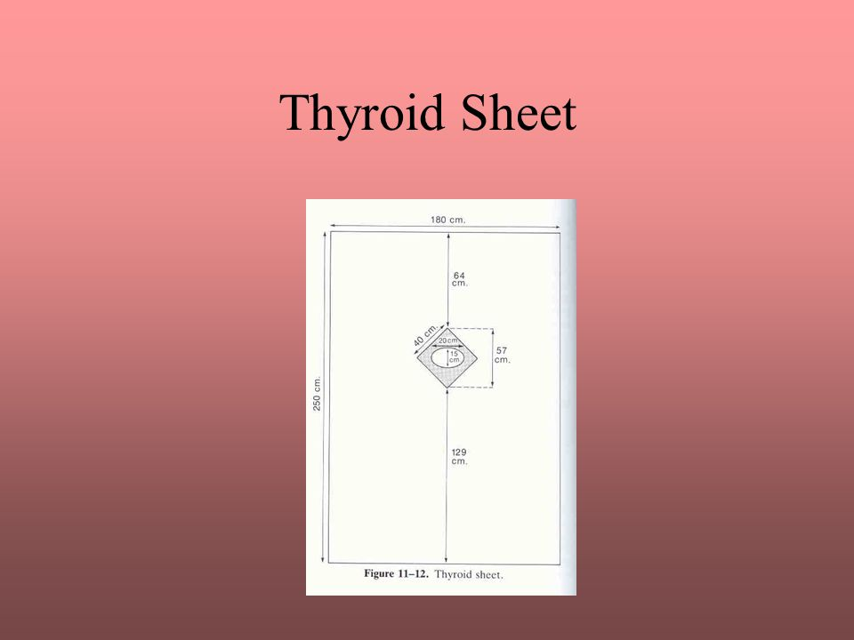 Thyroid Sheet