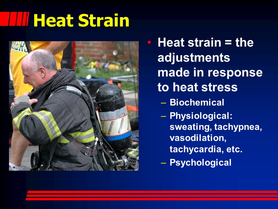 Heat Strain Heat strain = the adjustments made in response to heat stress. Biochemical.