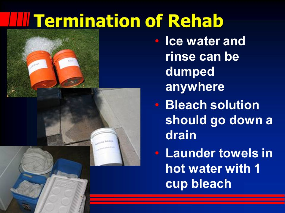 Termination of Rehab Ice water and rinse can be dumped anywhere