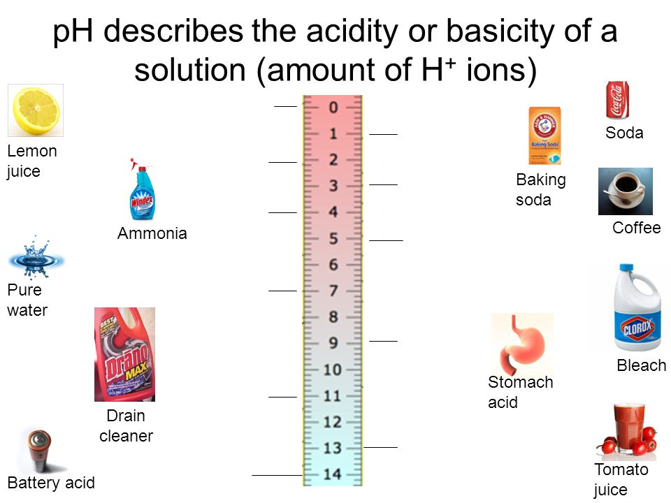 pH describes the acidity or basicity of a solution (amount of H+ ions)