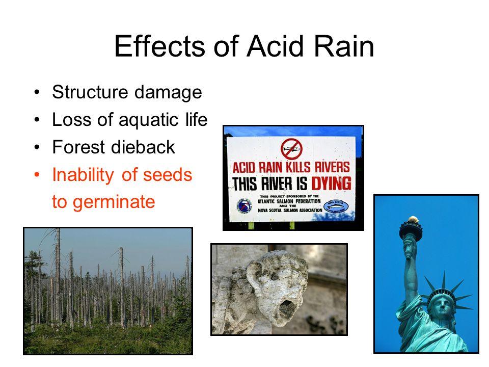 Effects of Acid Rain Structure damage Loss of aquatic life
