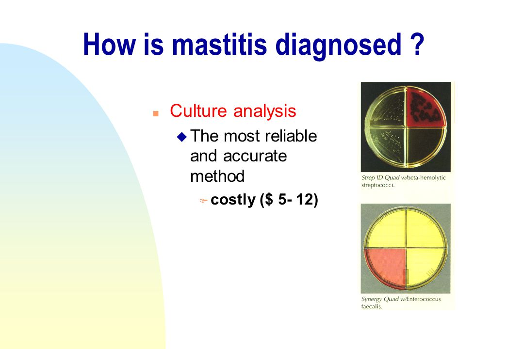 How is mastitis diagnosed