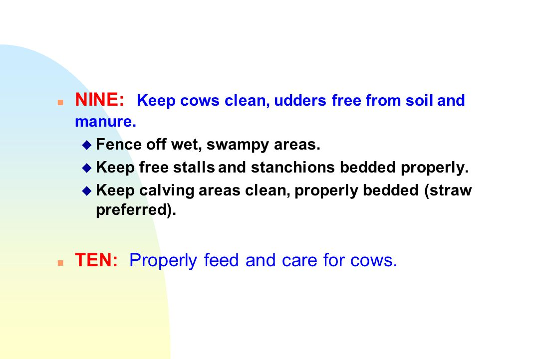NINE: Keep cows clean, udders free from soil and manure.