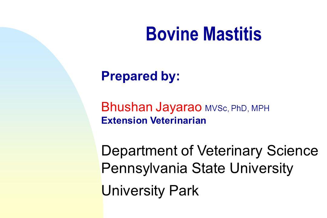 Bovine Mastitis Prepared by: Bhushan Jayarao MVSc, PhD, MPH Extension Veterinarian Department of Veterinary Science Pennsylvania State University University Park