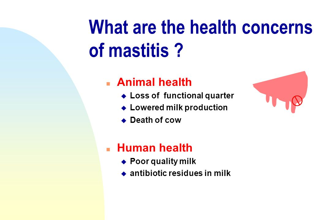 What are the health concerns of mastitis