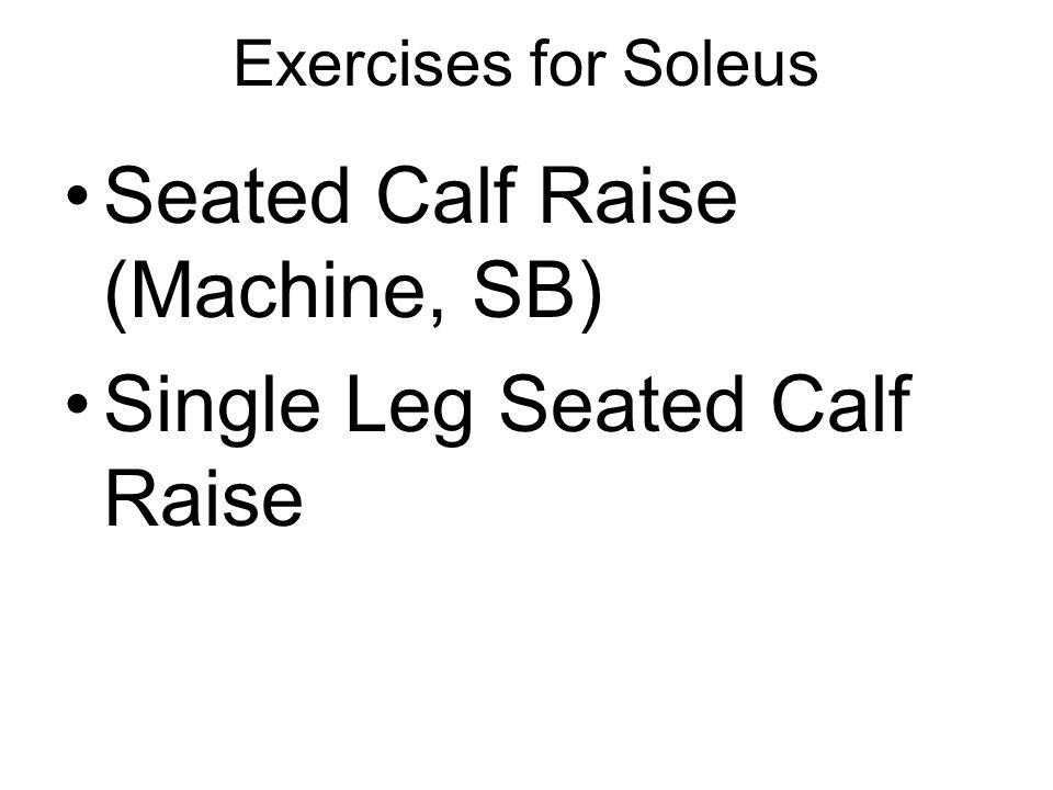 Seated Calf Raise (Machine, SB) Single Leg Seated Calf Raise
