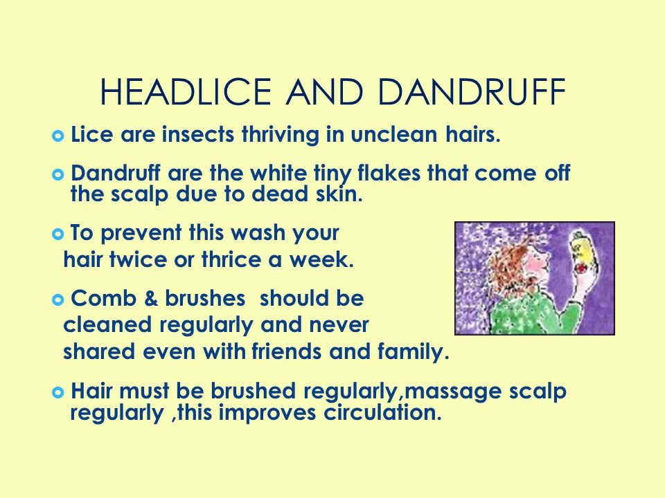 HEADLICE AND DANDRUFF Lice are insects thriving in unclean hairs.