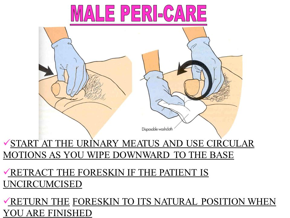 MALE PERI-CARE START AT THE URINARY MEATUS AND USE CIRCULAR MOTIONS AS YOU WIPE DOWNWARD TO THE BASE.