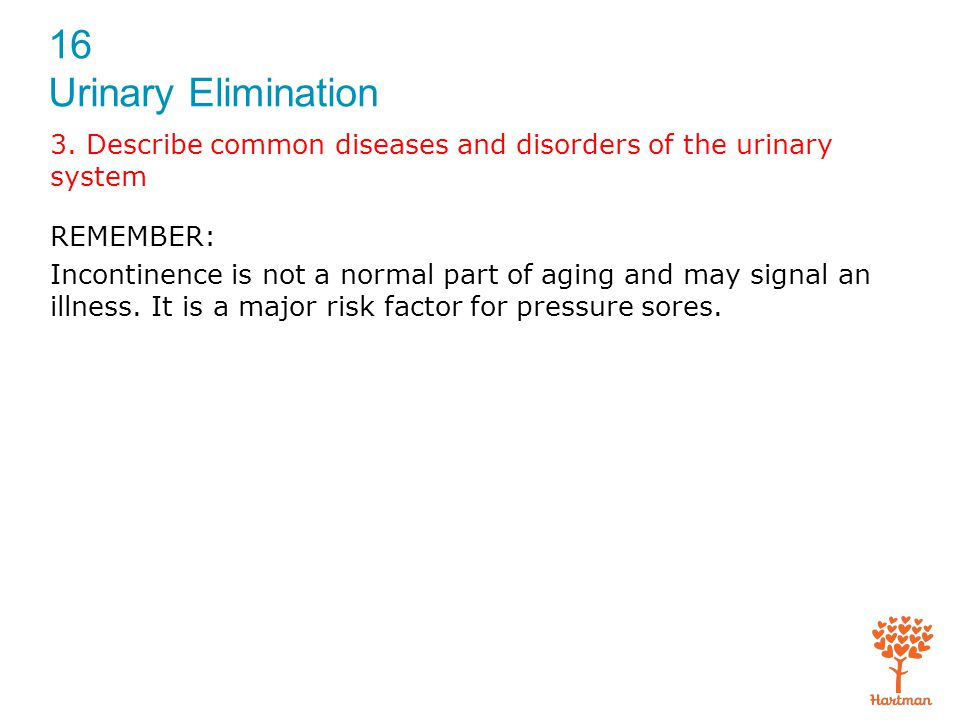 3. Describe common diseases and disorders of the urinary system