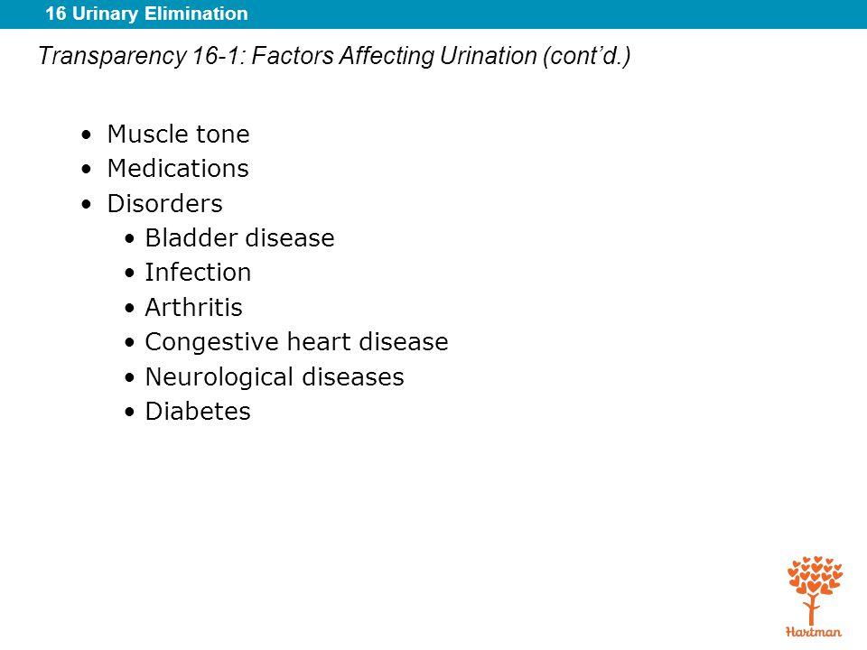 Transparency 16-1: Factors Affecting Urination (cont'd.)