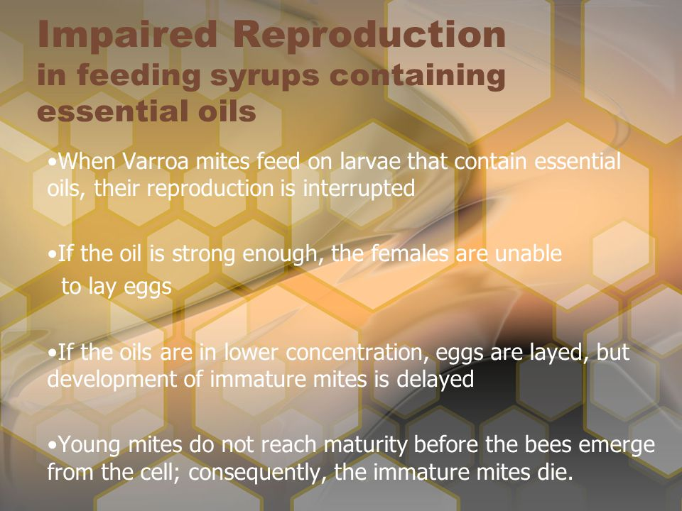 Impaired Reproduction in feeding syrups containing essential oils
