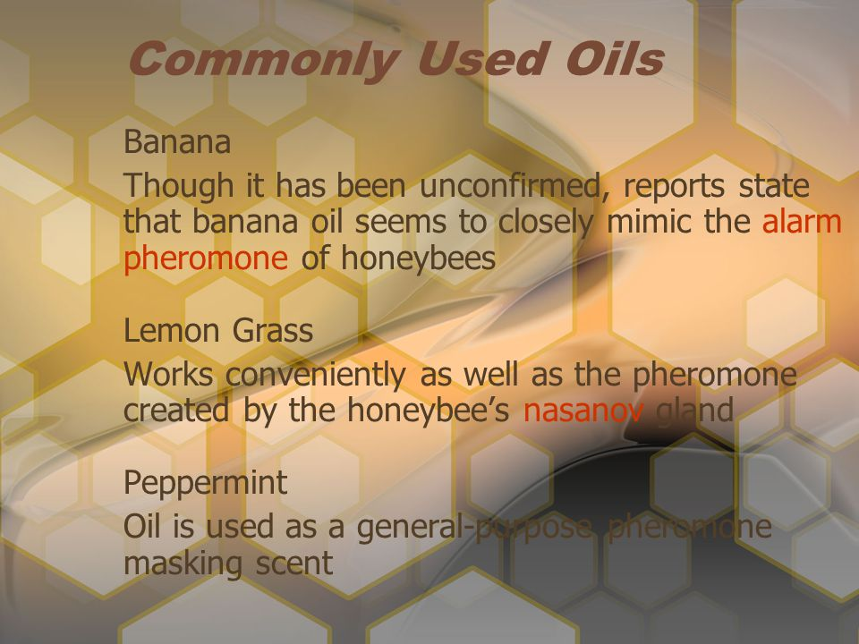 Commonly Used Oils Banana