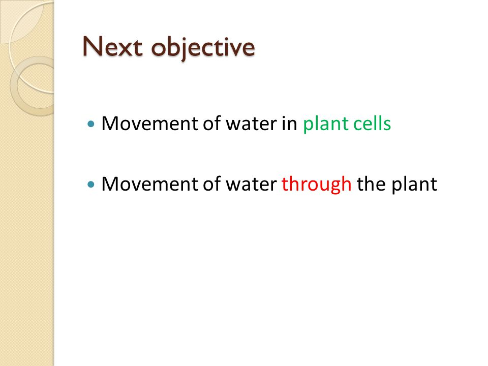 Next objective Movement of water in plant cells