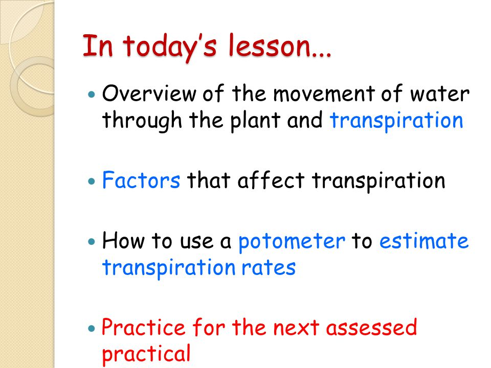 In today's lesson... Overview of the movement of water through the plant and transpiration. Factors that affect transpiration.