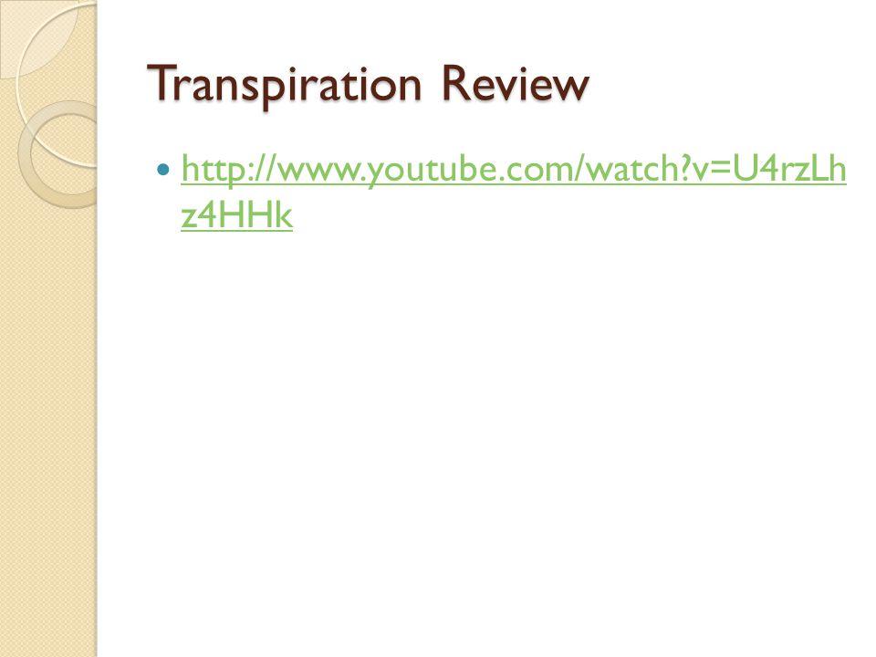 Transpiration Review http://www.youtube.com/watch v=U4rzLh z4HHk