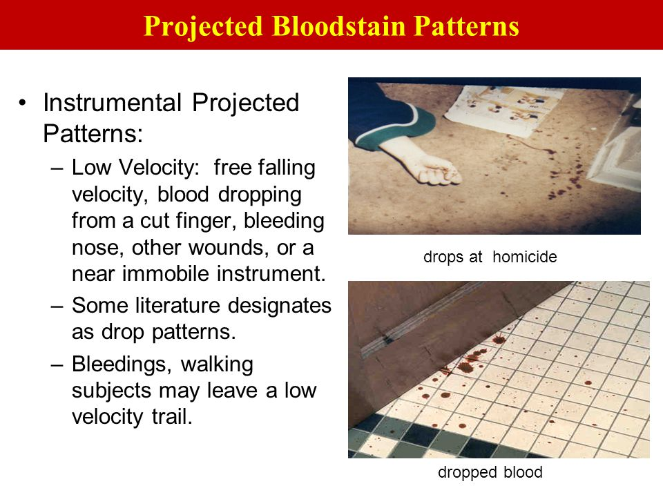 Projected Bloodstain Patterns