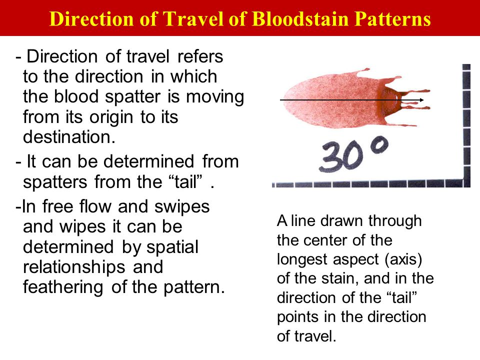 Direction of Travel of Bloodstain Patterns