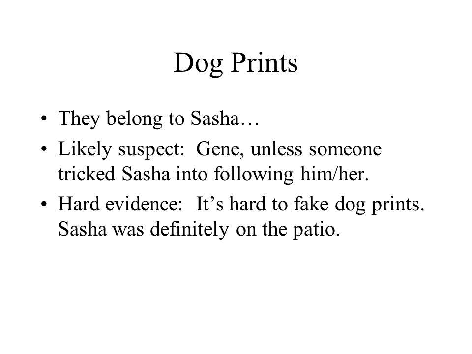 Dog Prints They belong to Sasha…