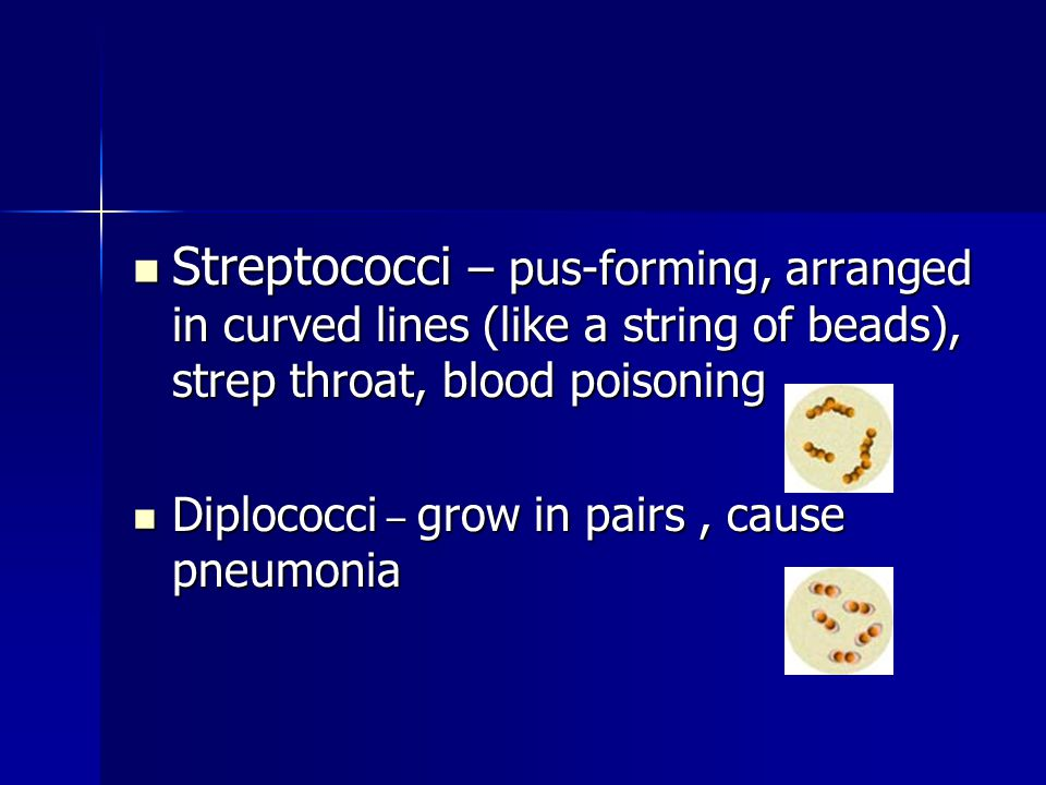 Streptococci – pus-forming, arranged in curved lines (like a string of beads), strep throat, blood poisoning