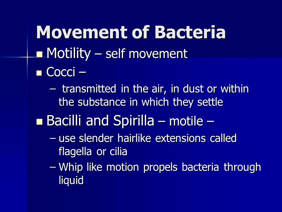 Movement of Bacteria Motility – self movement