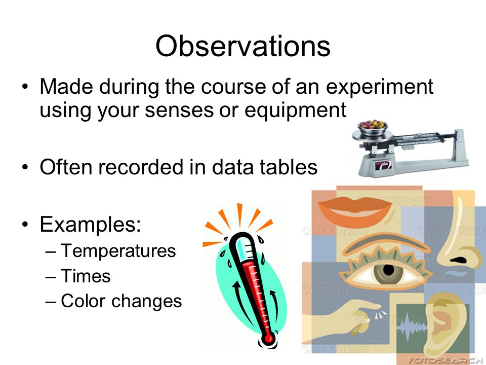 Observations Made during the course of an experiment using your senses or equipment. Often recorded in data tables.