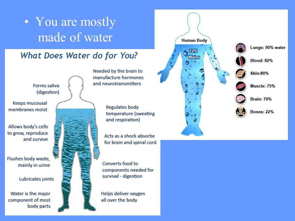 You are mostly made of water