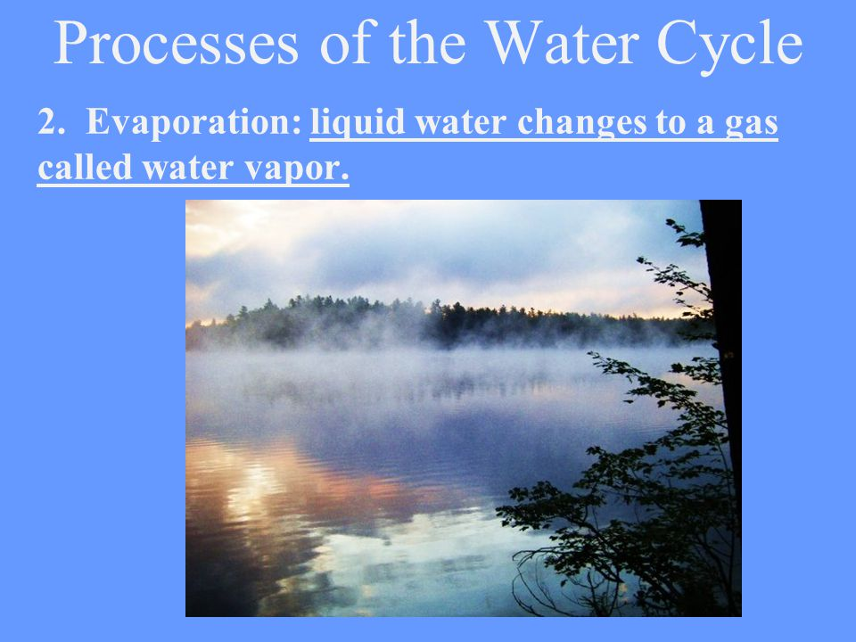 Processes of the Water Cycle
