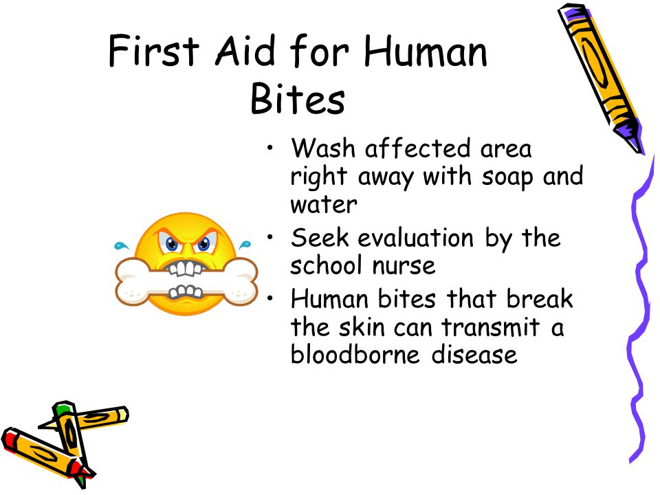 First Aid for Human Bites