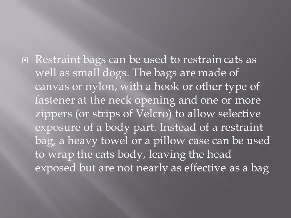 Restraint bags can be used to restrain cats as well as small dogs