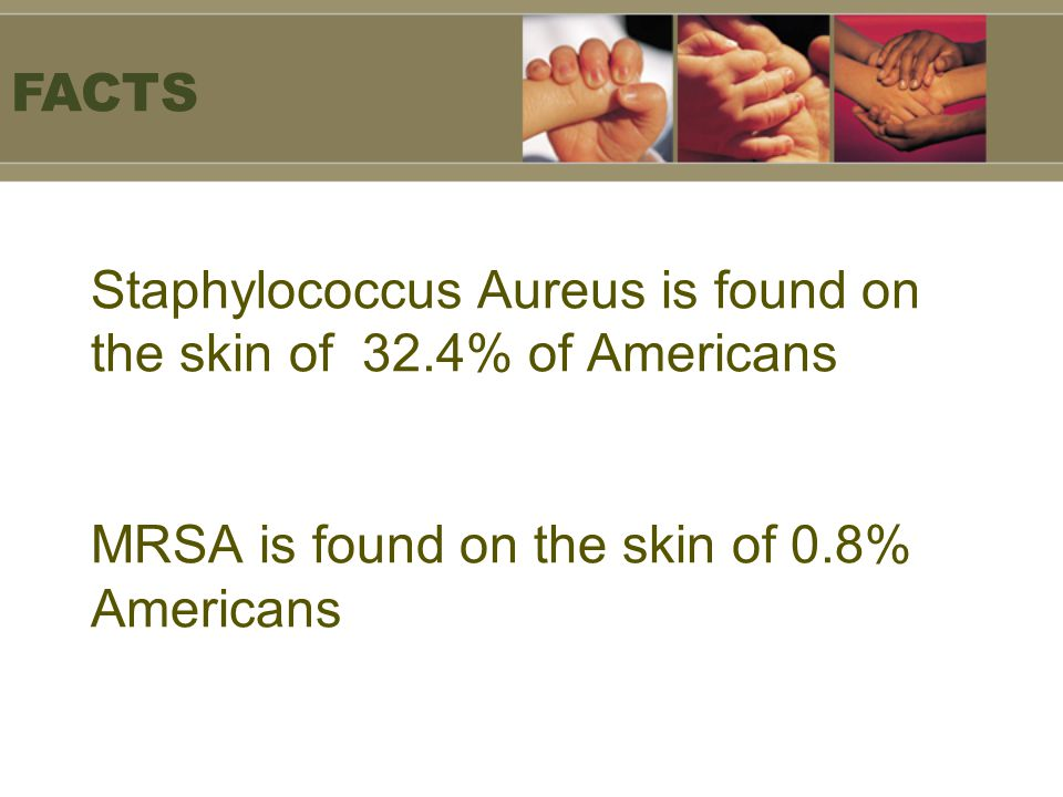 FACTS Staphylococcus Aureus is found on the skin of 32.4% of Americans MRSA is found on the skin of 0.8% Americans.