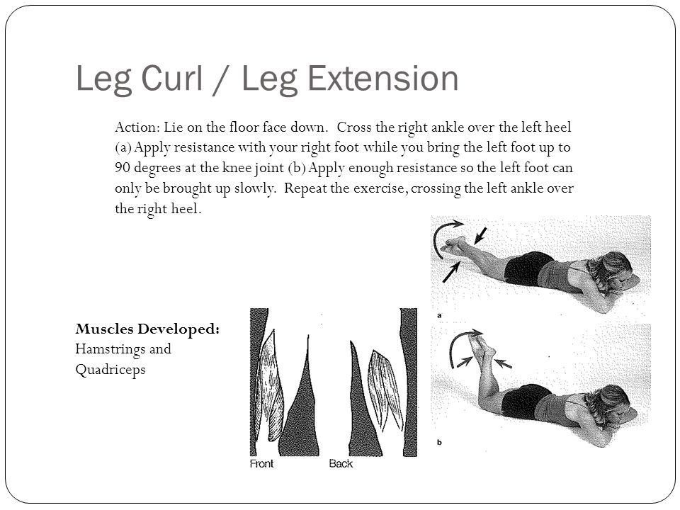 Leg Curl / Leg Extension