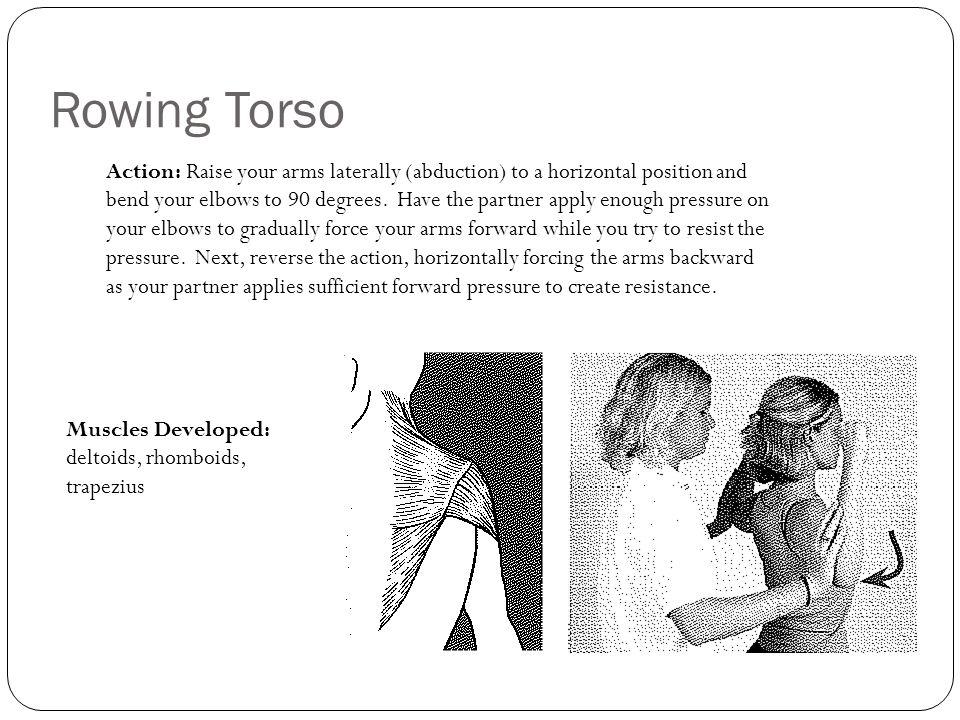 Rowing Torso