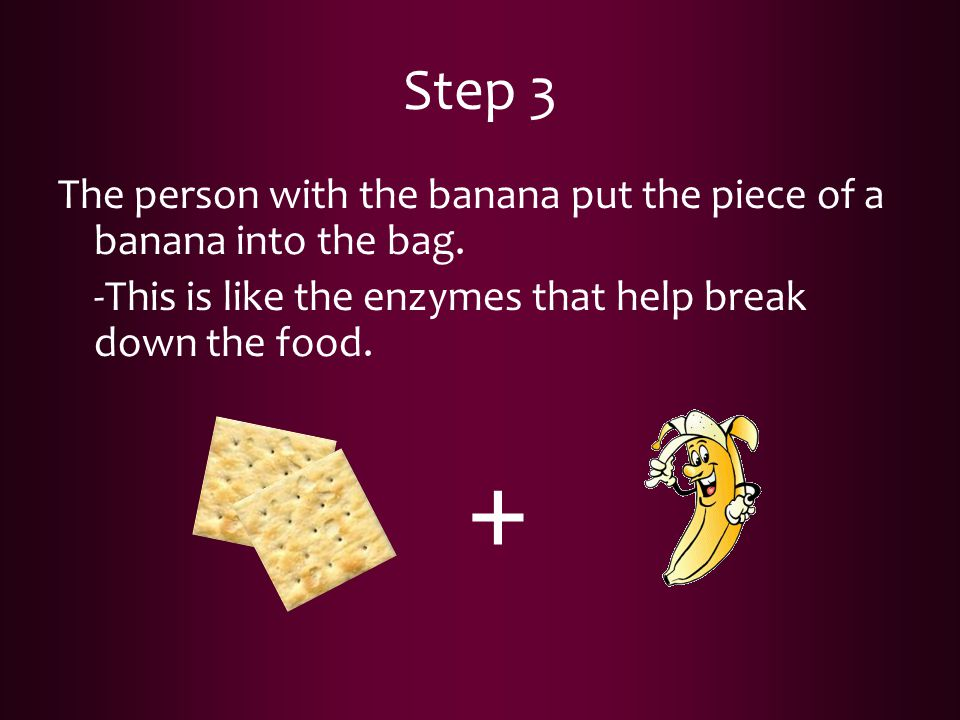 Step 3 The person with the banana put the piece of a banana into the bag. -This is like the enzymes that help break down the food.
