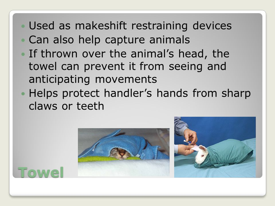 Towel Used as makeshift restraining devices