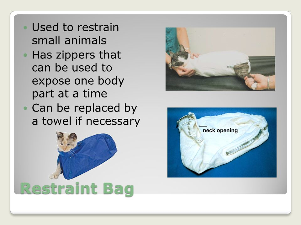 Restraint Bag Used to restrain small animals
