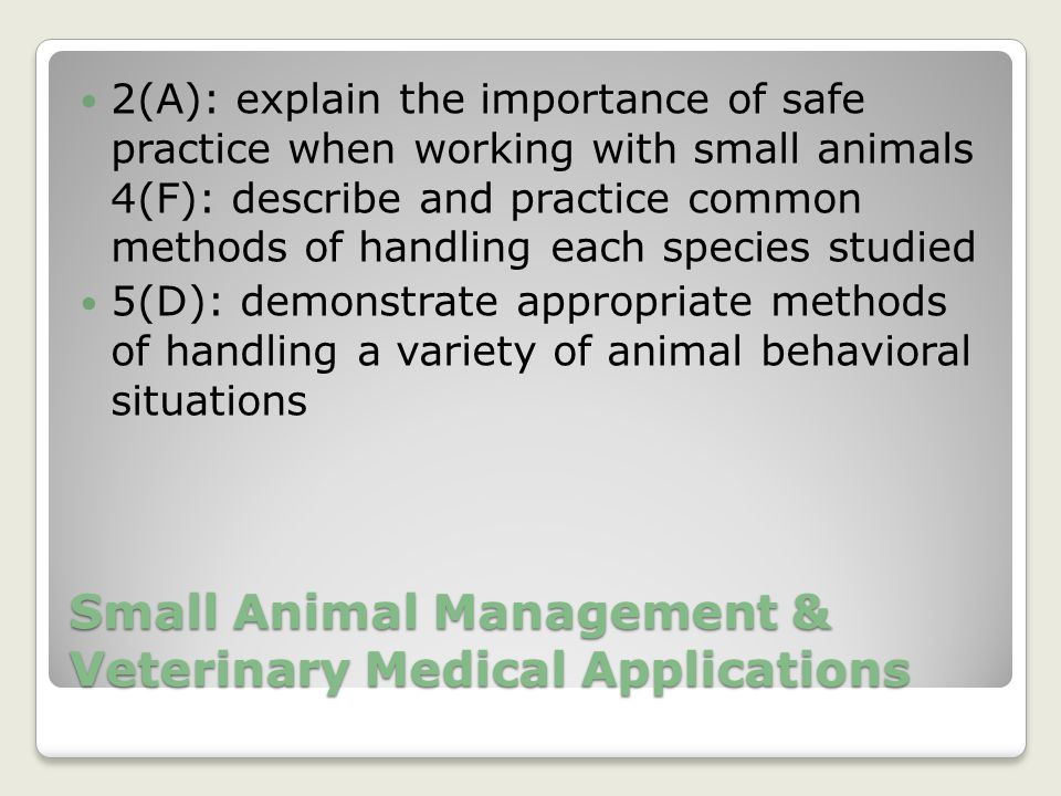 Small Animal Management & Veterinary Medical Applications